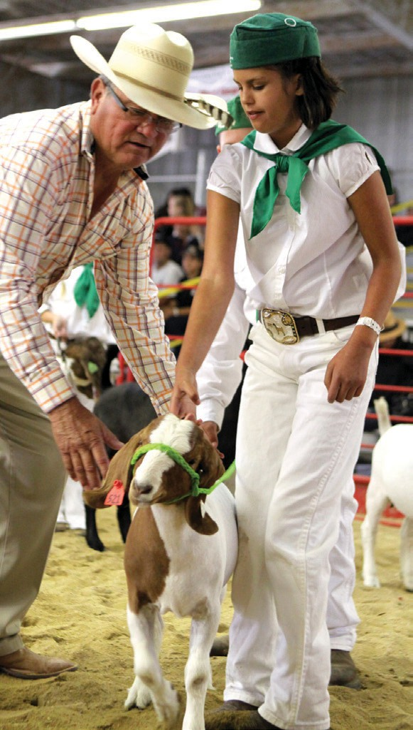 Fair goat nets record 31k at auction for special cause thousand 4 h showingamelia gallardo and friends at the vc fair amanda peacock thecheapjerseys Choice Image